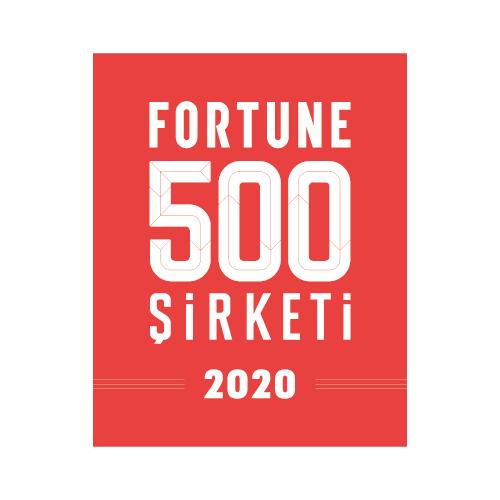 Fortun 500_2020